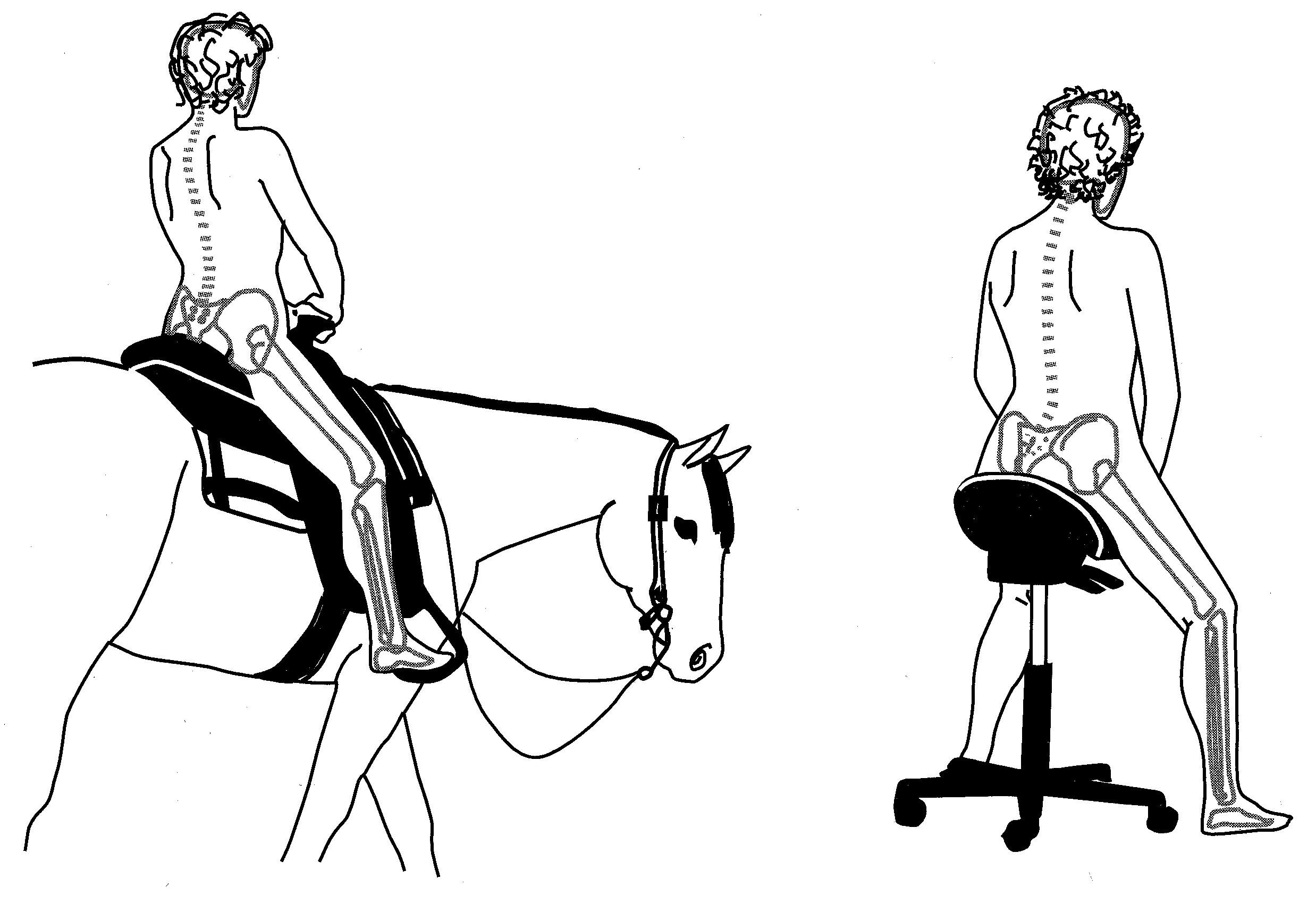 Bambach Saddle Seat ideal posture on horseback