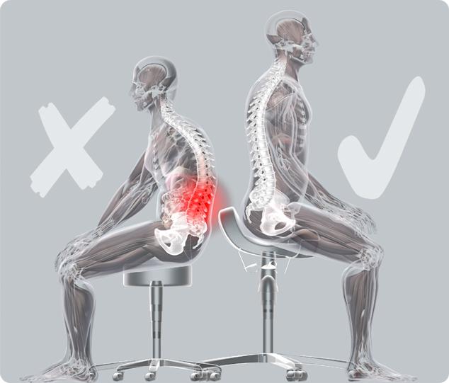 Bambach Saddle Seat Spinal Posture